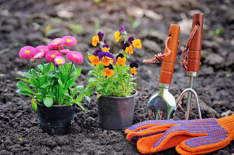 Be Clean gardening services