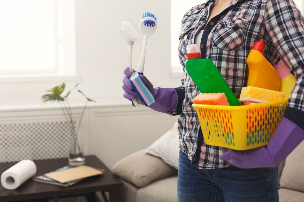Domestic cleaning services in Abingdon