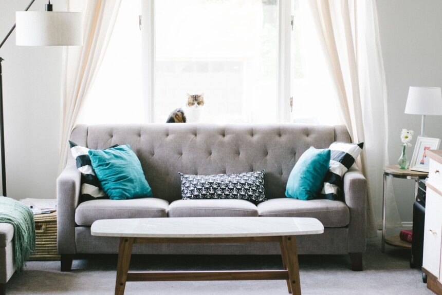 Sofa Deep Cleaning-DIY Or Call The Professionals