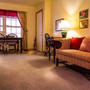 Steam Clean vs Shampooing Carpet